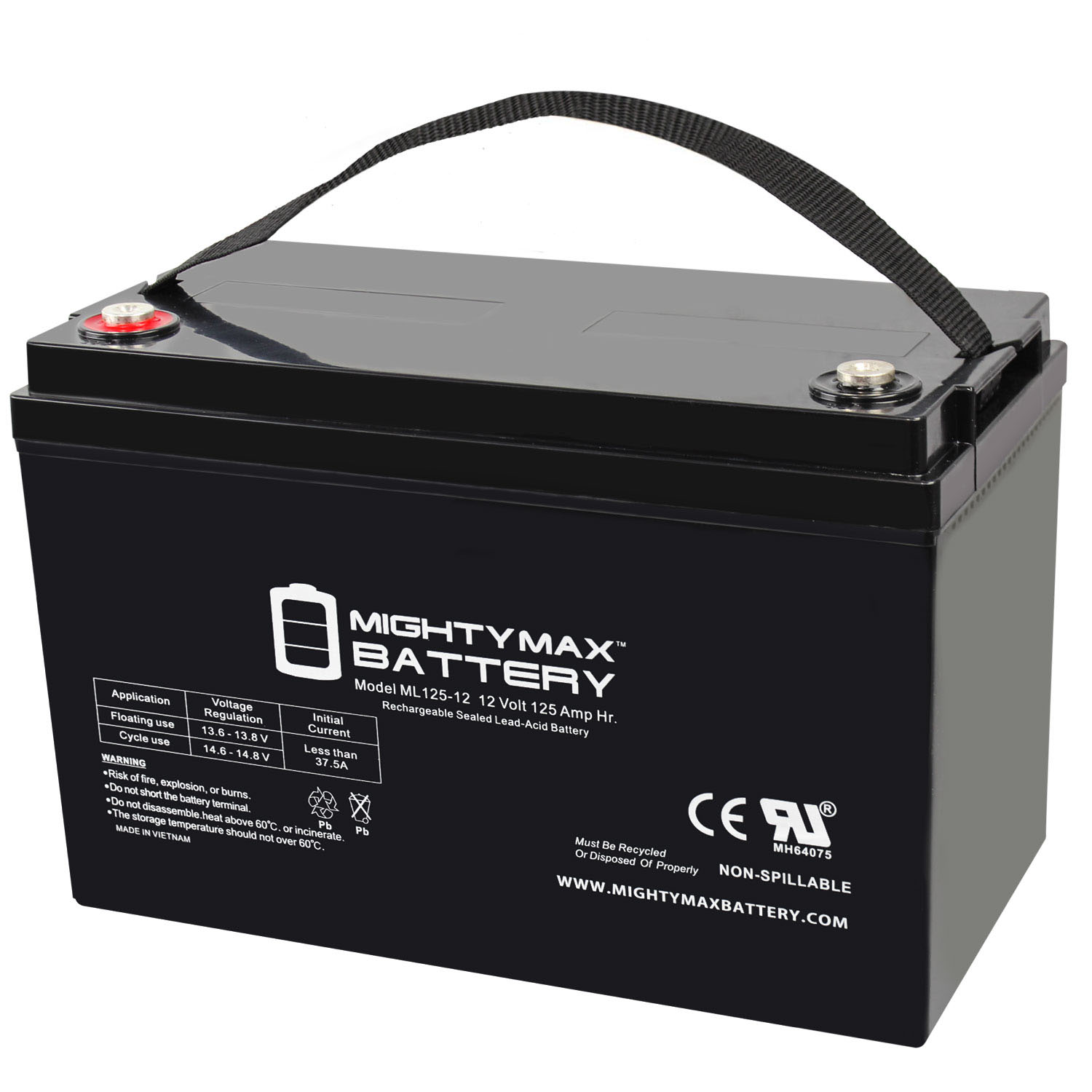12 VOLT 125 AH SEALED LEAD ACID BATTERY