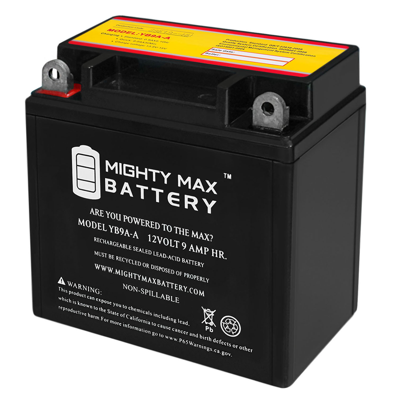 YB9A-A 12V 9AH Battery Replacement for 01-163, LB9A-A